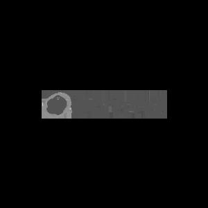 PORTWELL_logo-grijs