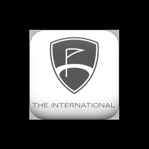 THE-INTERNATIONAL_logo-png-grijs