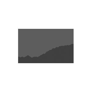 WILGENHAEGE-logo
