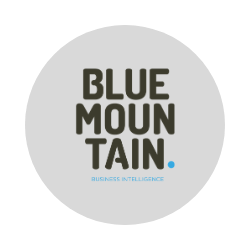 BLUE MOUNTAIN BUSINESS INTELLIGENCE